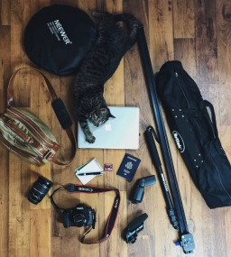 What's in my Bag Series with LeeAnn